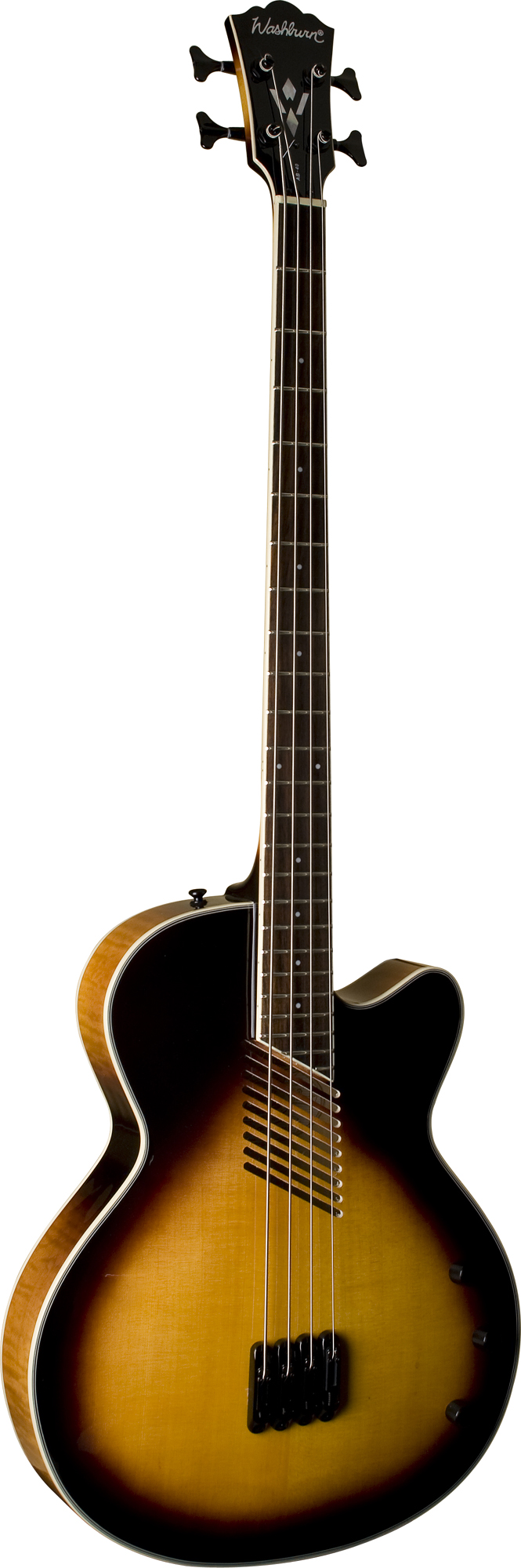 Huge  Looking For Acoustic Bass Guitar Plans